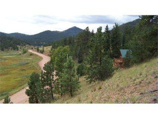 Florissant, Divide, Guffey, Lake George Colorado Land